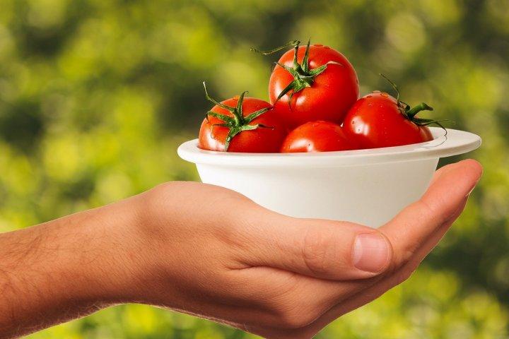 Jak pěstovat rajčata? Můžete to zkusit třeba i na balkóně!