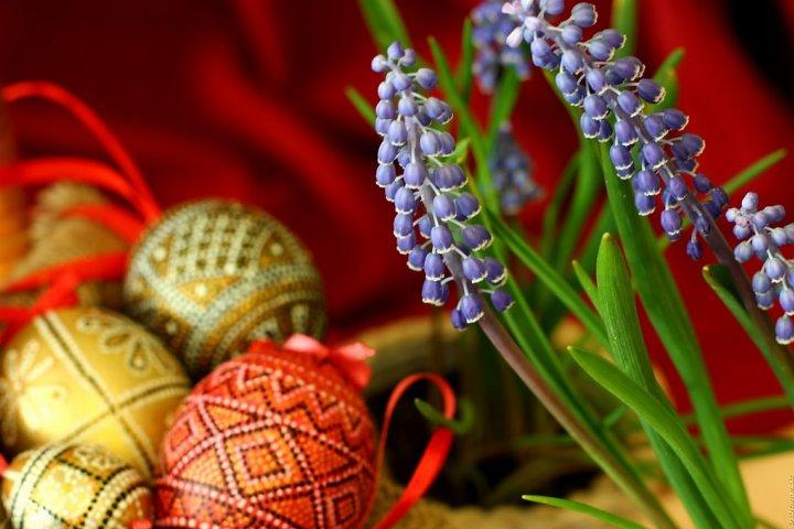 Jarní dekorace pro váš byt