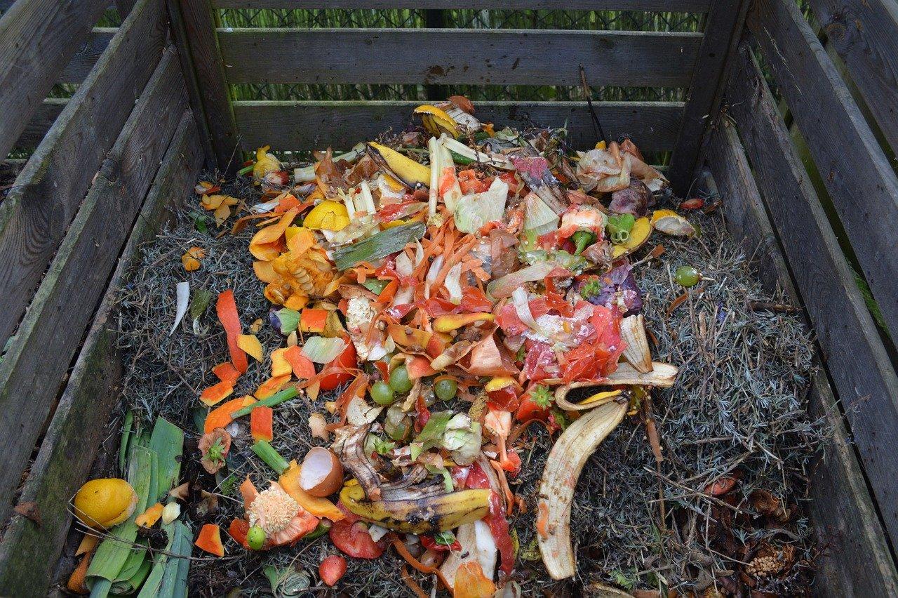Patří tam i rostlinný odpad z kuchyně