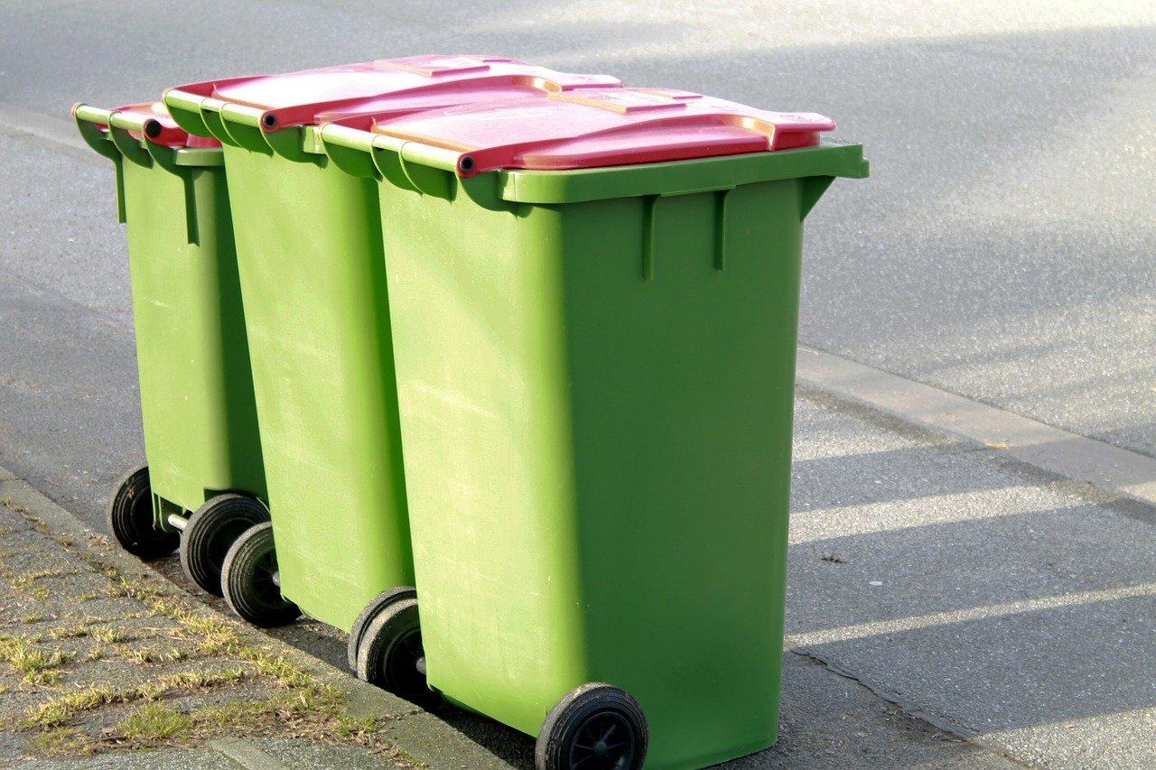 Živočišné zbytky patří do bio popelnic