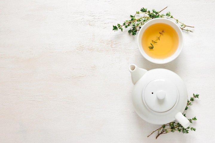 Zelený čaj pijí lidé už celých 5 tisíc let. Věděli jste, že ho lze pěstovat i jako pokojovou rostlinu?