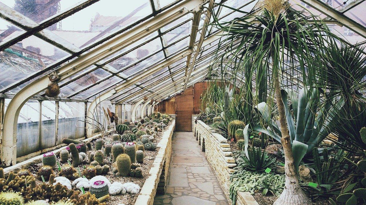 Vytápěný skleník s exotickými rostlinami