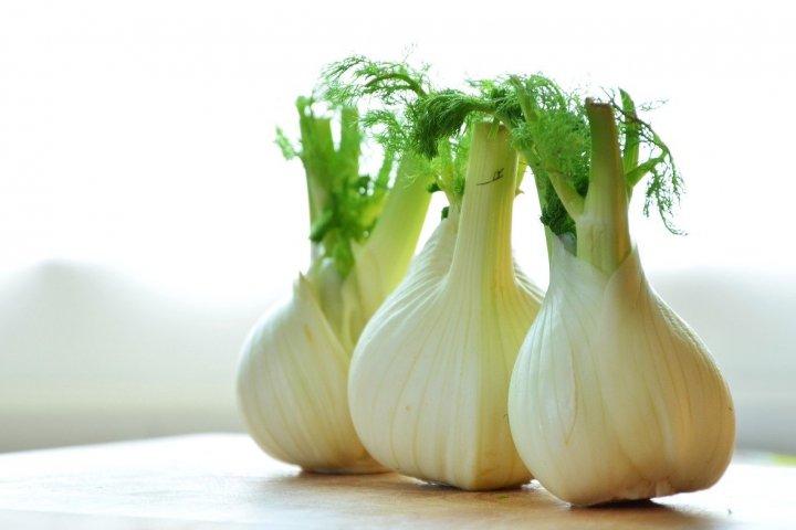 Fenykl sladký je zdravá, voňavá a velmi chutná zelenina. Zkuste si ho vypěstovat sami!