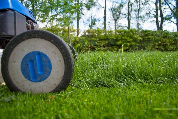 Péče o trávník od A až do Z